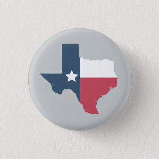 Texas State - Flag Pin