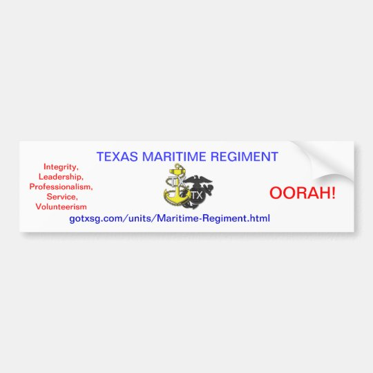 Texas State Guard Bumper Sticker