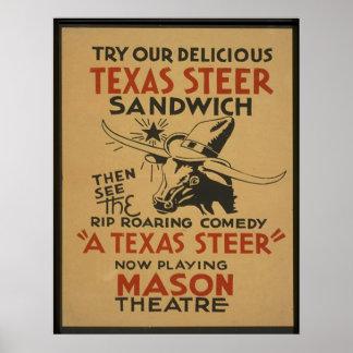 Texas Steer Poster