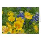 Texas Wildflower Bluebonnet & Flax Notecard