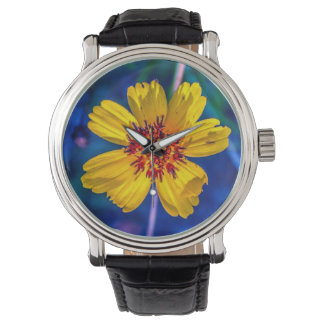 Texas Wildflower From the Garden in My Mind Watch