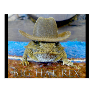 Texe's Cousin...bIg hAt rEx Postcard