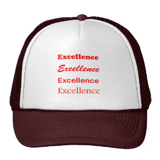 Text EXCELLENCE Motivation Leadership Coach Mentor Trucker Hat
