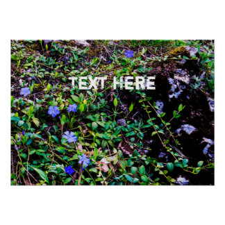 Text Template | Natural Plants&Flowers Poster