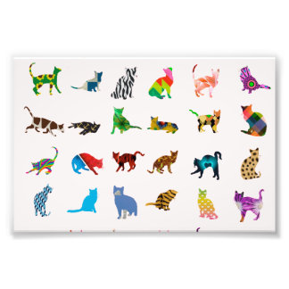 Texture avec les chats colorés photo sur toile