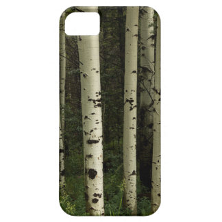 Texture Of A Forest Portrait iPhone 5 Case