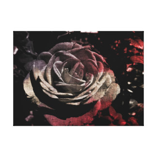 Textured Beige And Red Rose Canvas Print