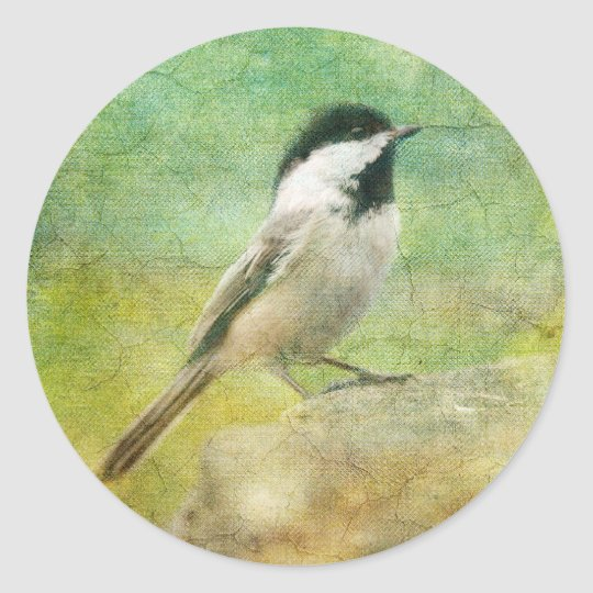 Textured Chickadee Classic Round Sticker