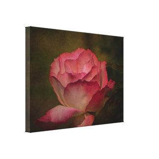 Textured Deep Pink Rose Stretch Canvas Print