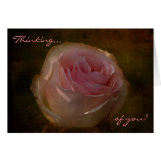 "Textured Pink Rose ""Thinking of You"" Greeting Card"