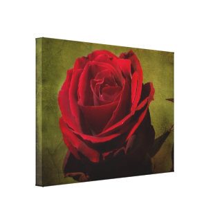 Textured Red Rose Stretch Canvas Print