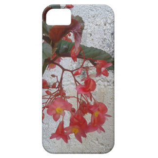 Textures iPhone 5 Cover