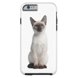Thai kitten tough iPhone 6 case