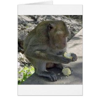 Thailand Monkey Card