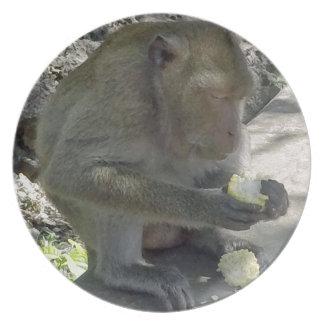 Thailand Monkey Plate
