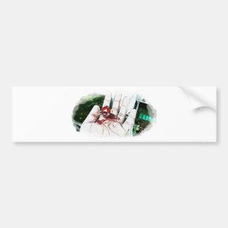 Thailand shrimp & crayfish club bumper sticker