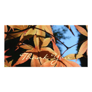 Thank You (2) - Japanese Maple Picture Card