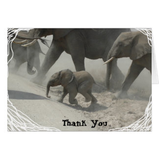 Thank You -   African Elephant Card
