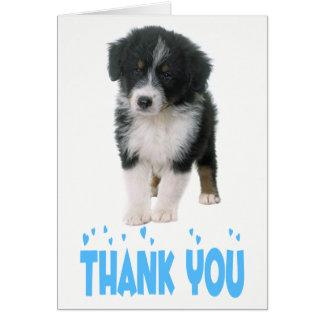 Thank You Australian Shepherd Puppy Dog Card