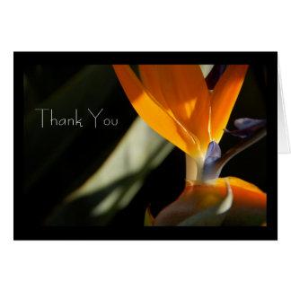 THANK YOU Bird-of-Paradise Card