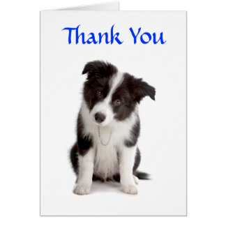 Thank You Border Collie Puppy Greeting Card