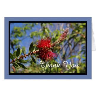 Thank You Bottlebrush Flower Note Card