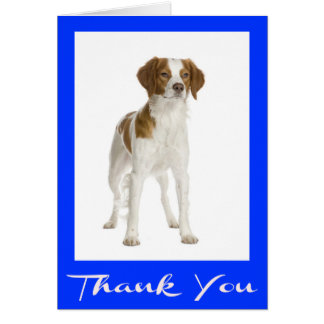 Thank You Brittany Spaniel Puppy Dog Canine Card
