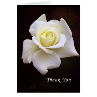 Thank You Card for Sympathy & Flowers