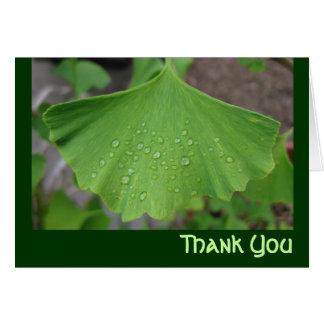 Thank you card - ginko biloba