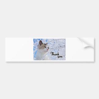 Thank You Cat Bumper Sticker