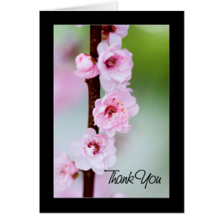 Thank you - Cherry blossom Card