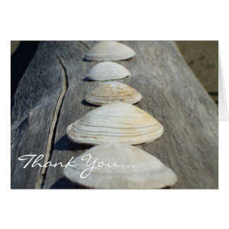 Thank You Clam Shells greeting card