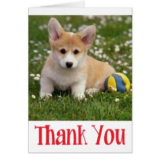 Thank You Corgie ( Pembroke ) Puppy Dog Note Card