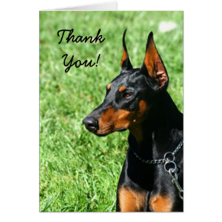 Thank You Doberman Pinscher greeting card