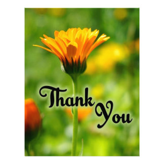 Thank You Flower Letterhead