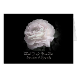Thank You for Sympathy, One Pale Pink Rose Card