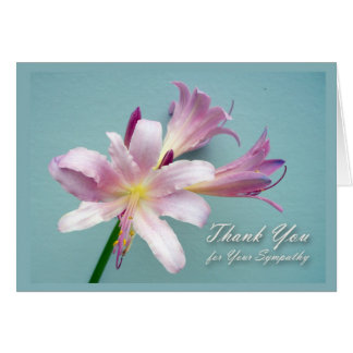 Thank You for Sympathy, Resurrection Lily Card