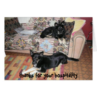 Thank you for your hospitality card (dogs)