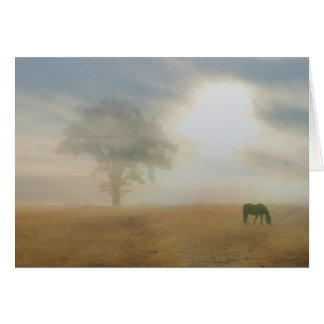 Thank you for your sympathy horse and sun card