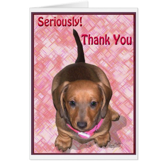 Thank You from A little Dachshund Puppy Card