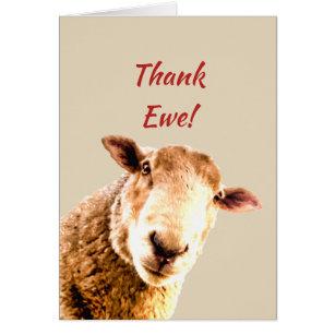 thank you funny sheep animal humour