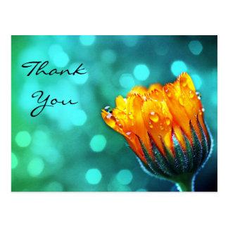 Thank You, Golden Marigold on Teal Bokeh Postcard