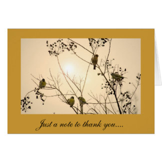 Thank You Greeting Card with Bird Design