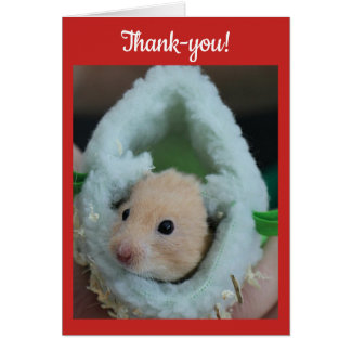 Thank-You Holiday Hamster Card