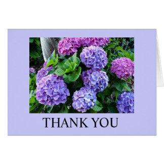 Thank You - Hydrengeas Card