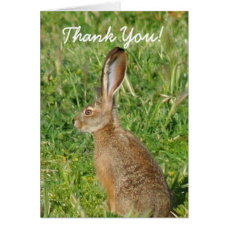 Thank You Jack Rabbit Greeting Card
