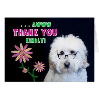 THANK YOU KINDLY NOTE CARD - HUMOR-DOG-FLOWER