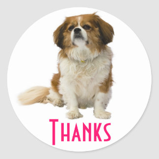 Thank You  King Charles Spaniel Puppy Sticker