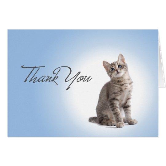 Thank You Kitten on Blue Card