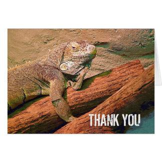 Thank You  - Lazy Lizard Card